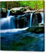 Smokey Mountains Mountain Stream 4 Canvas Print