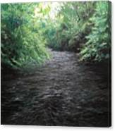 Smokey River Canvas Print
