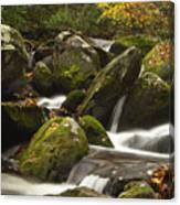 Smokies Waterfall Canvas Print