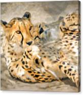 Smokin Cheetah Love Canvas Print