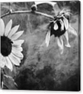Smoking Sunflowers Canvas Print