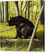 Smoky Mountain Bear Canvas Print