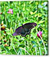 Smoky Mountain Butterfly  Canvas Print
