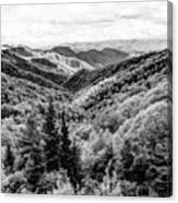 Smoky Mountains In Black And White Canvas Print