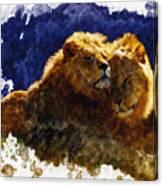 Smooching Lions Canvas Print