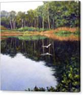 Smooth Landing Canvas Print