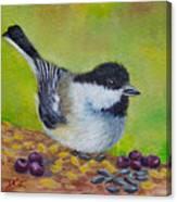 Smorgasbord Canvas Print