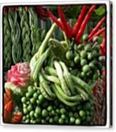 Snake Beans. At The Surin Elephant Canvas Print