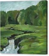 Snake Like Creek 2 Maine Canvas Print