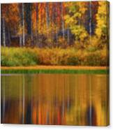 Snake River Fall Colors Canvas Print