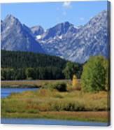 Snake River, Grand Tetons National Park Canvas Print