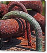Snaking Rust  Canvas Print
