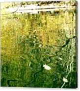 Snaky Reflection Canvas Print