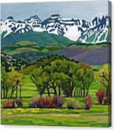 Sneffels Range Spring Acrylic Canvas Print