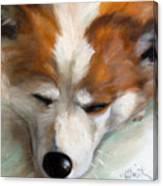 Snooze Canvas Print
