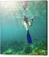 Snorkeling In Coral Reef Canvas Print