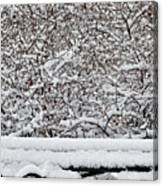 Snow And Bench Canvas Print