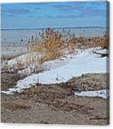 Snow And Sand Canvas Print