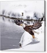 Snow Ballet Canvas Print