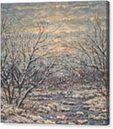 Snow By Brook. Canvas Print