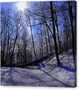 Snow Covered Path Canvas Print