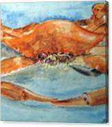 Snow Crab Is Ready Canvas Print