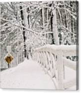 Snow Curve Canvas Print