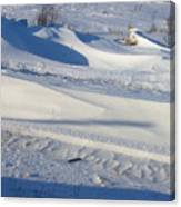 Snow Drift Canvas Print