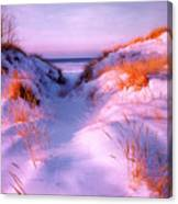 Snow Dune Canvas Print
