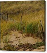 Snow Fence In Sand Canvas Print