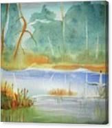 Snow Goose Landing Canvas Print