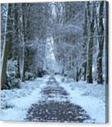 Snow In The Avenue Canvas Print