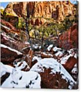 Snow In The Canyons Canvas Print