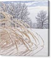 Snow Laden Canvas Print