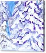 Snow Laden Trees Canvas Print