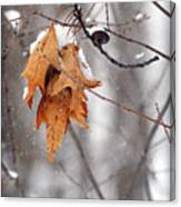 Snow Leaves Canvas Print