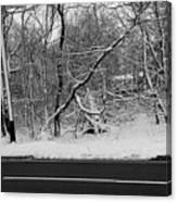 Snow On Fallen Tree Canvas Print