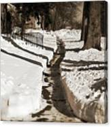 Snow Paths And Winter Shadows Canvas Print