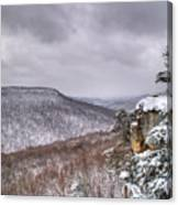 Snow Remoteness Canvas Print