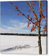 Snow Ripple Canvas Print