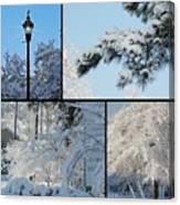 Snow Scenes Of Charleston Sc Canvas Print