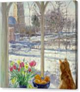 Snow Shadows And Cat Canvas Print