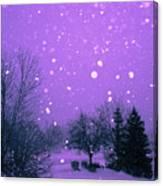Snow Song Canvas Print