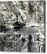 Snow Stream Canvas Print