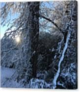 Snow Sunrise 2 Canvas Print