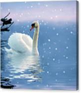 Snow Swan Swim Canvas Print