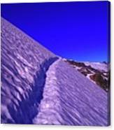 Snow Trail  Canvas Print
