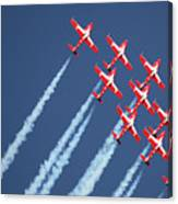 Snowbirds In Flight Canvas Print