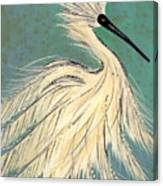 Snowey Egret Tropical Canvas Print