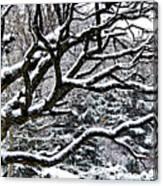 Snowfall And Tree Canvas Print